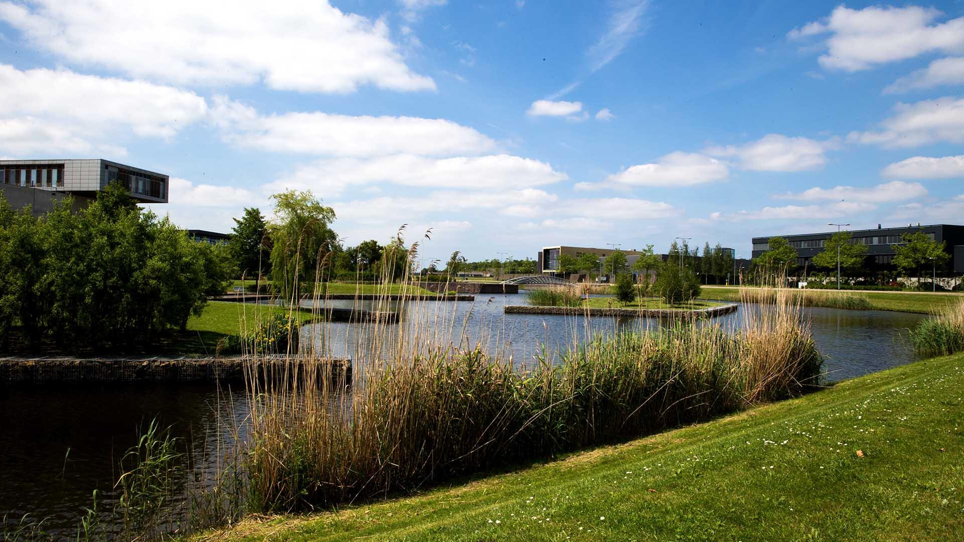 Overzicht bedrijvenpark Nieuw-vennep Zuid